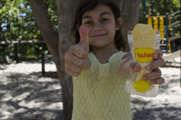 awesome-best-reusable-icy-pole-pouches-sinchies