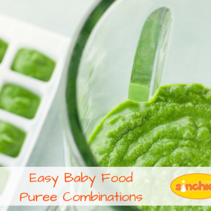 easy baby food puree combinations